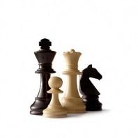 Juliaus Sabatausko taurės šachmatų turnyras